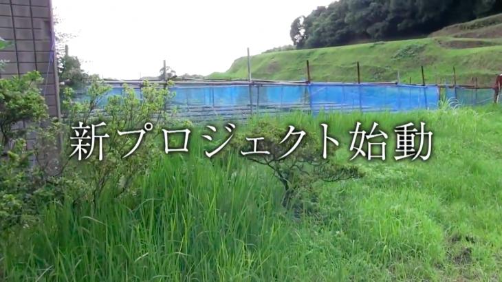 【予告】フリフル 新プロジェクト始動