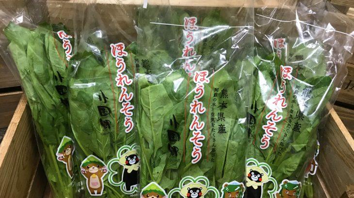 【送料無料(1,750円相当)】『熊本産』ほうれん草5袋