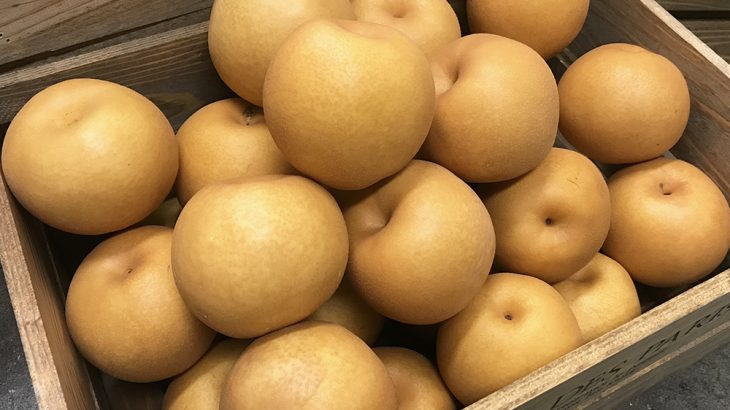 【4,000円相当】『熊本産』梨(品種未定)3kg