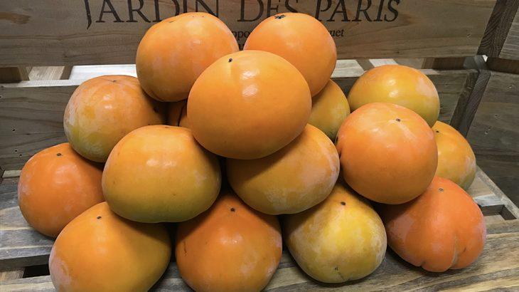 柿(品種未定)5kg(24〜28玉入り)