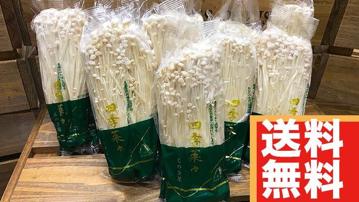 【送料無料】えのき特大(200g×10袋)