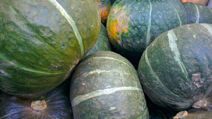 【3,500円以上相当】大玉の『かぼちゃ』4玉