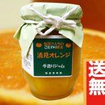 【送料無料】規格外品で作った「清見オレンジジャム」1瓶(150g)【2,000円相当】