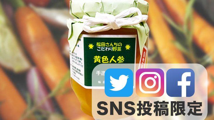 SNS投稿限定!!【送料無料】規格外品で作った「黄色人参ジャム」1瓶(150g)【2,000円相当】