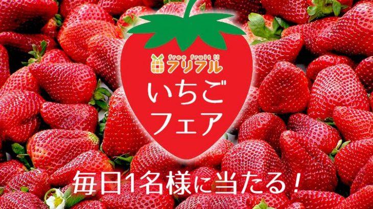 フリフルいちごフェア開催!毎日1名様に旬のいちご4パック(4,000円相当)をプレゼント!!