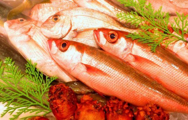 魚の規格外も出ている!規格外を提供する居酒屋の思い