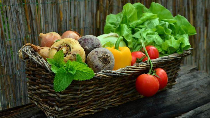 今さら聞けない野菜の基本をおさらい!野菜の種類どれだけ知ってる?