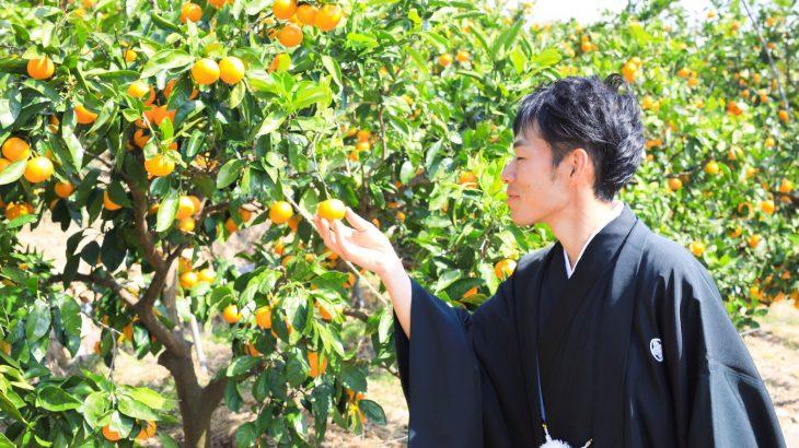 和歌山のみかん愛溢れる「みかんのみっちゃん農園」さんをご紹介!