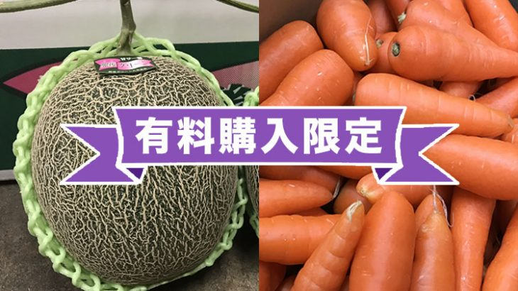 【特別有料販売!】肥後グリーン(メロン)& まゆみ農園の規格外 にんじんをお得に購入キャンペーン!